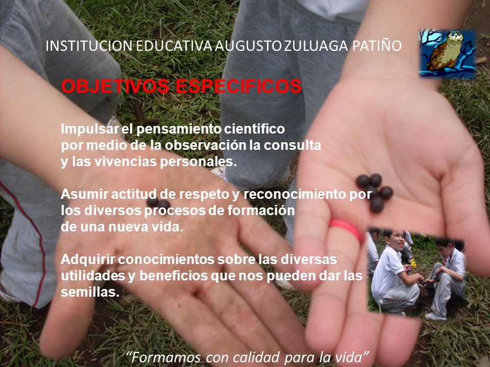 INSTITUCION EDUCATIVA AUGUSTO ZULUAGA PATIÑO OBJETIVOS ESPECIFICOS Impulsar el pensamiento científico por medio de la observación la consulta y las vi