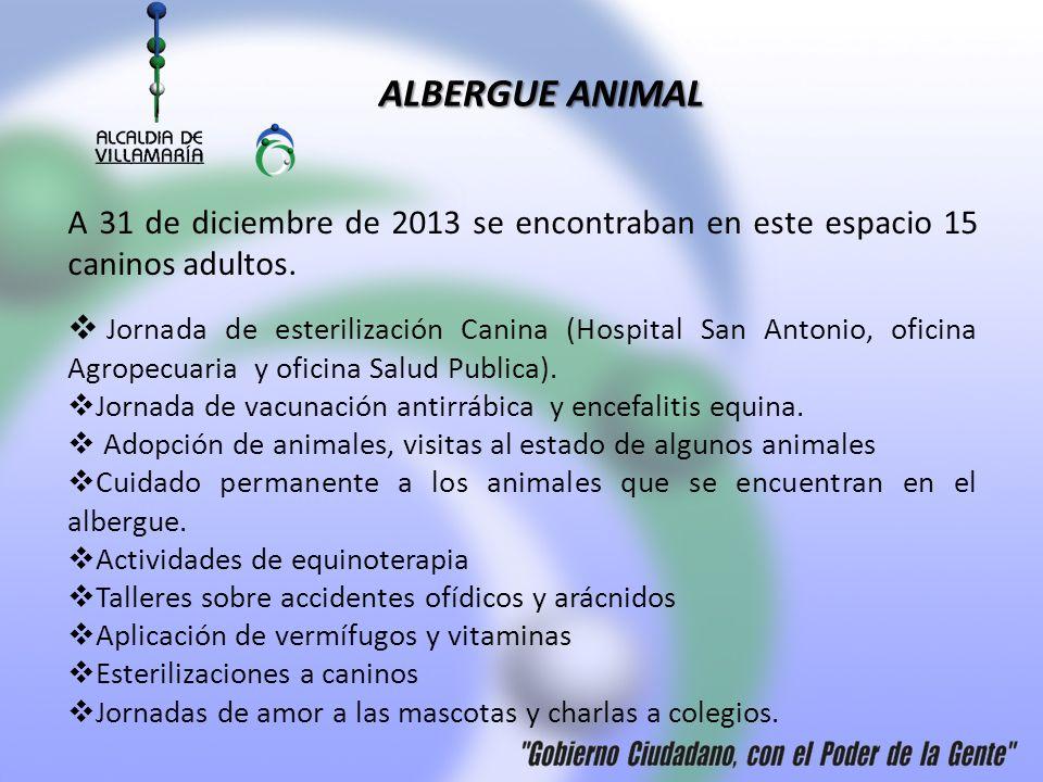 ALBERGUE ANIMAL Jornada de esterilización Canina (Hospital San Antonio, oficina Agropecuaria y oficina Salud Publica). Jornada de vacunación antirrábi