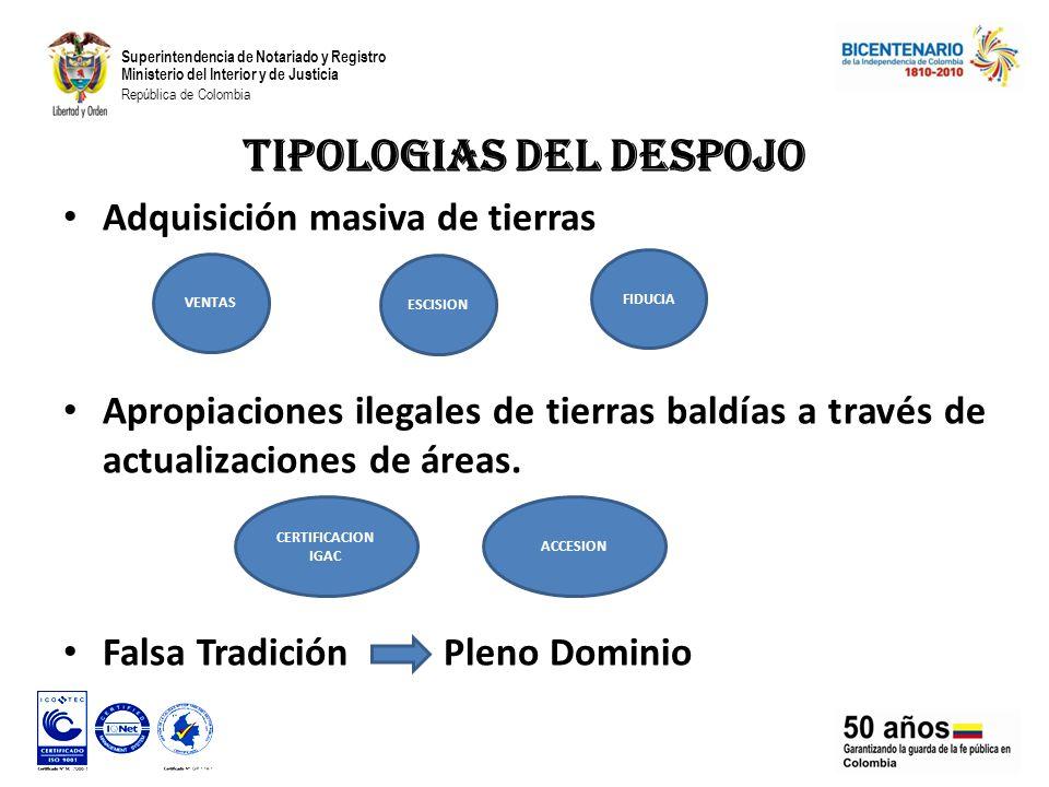 TIPOLOGIAS DEL DESPOJO Adquisición masiva de tierras Apropiaciones ilegales de tierras baldías a través de actualizaciones de áreas.