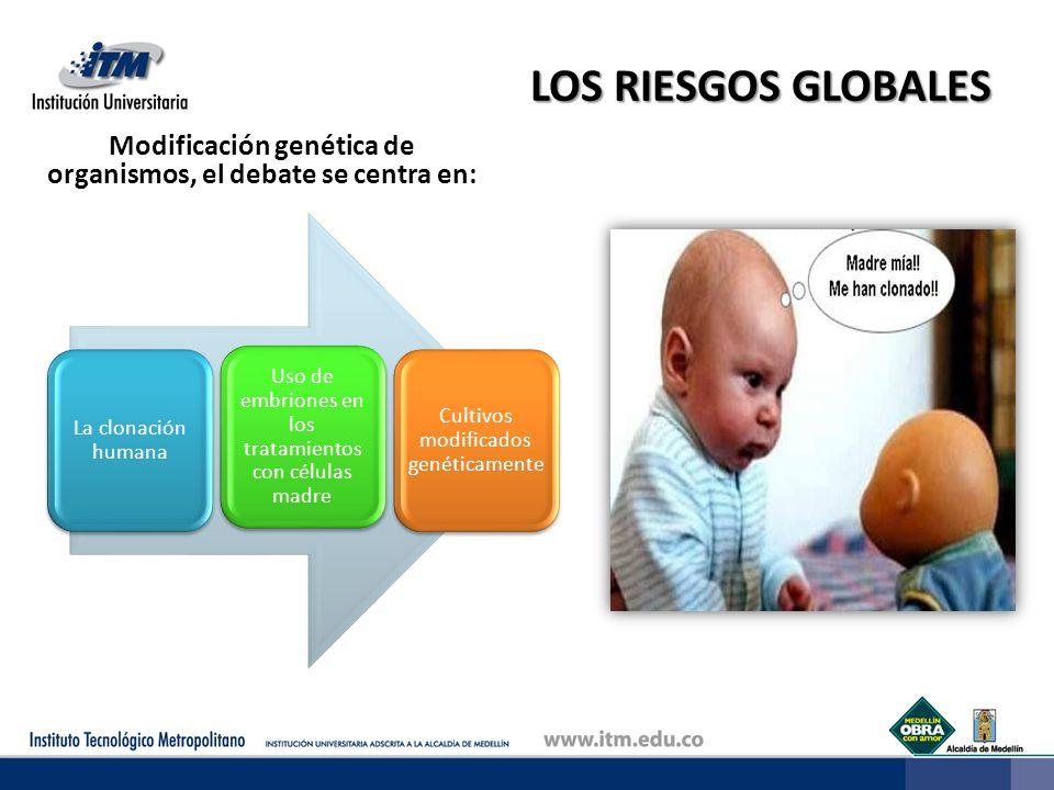 LOS RIESGOS GLOBALES Modificación genética de organismos, el debate se centra en: La clonación humana Uso de embriones en los tratamientos con células madre Cultivos modificados genéticamente
