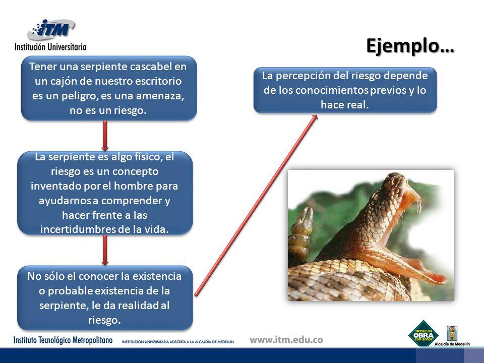 Ejemplo… Tener una serpiente cascabel en un cajón de nuestro escritorio es un peligro, es una amenaza, no es un riesgo.