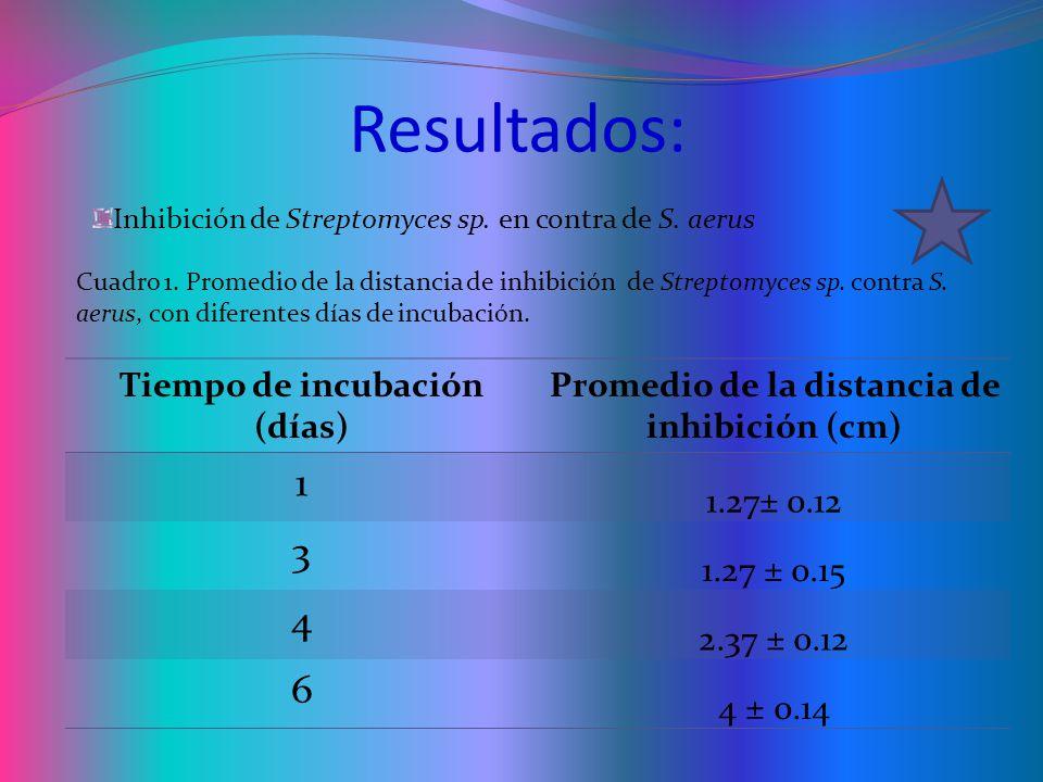Resultados: Tiempo de incubación (días) Promedio de la distancia de inhibición (cm) 1 1.27± 0.12 3 1.27 ± 0.15 4 2.37 ± 0.12 6 4 ± 0.14 Inhibición de Streptomyces sp.