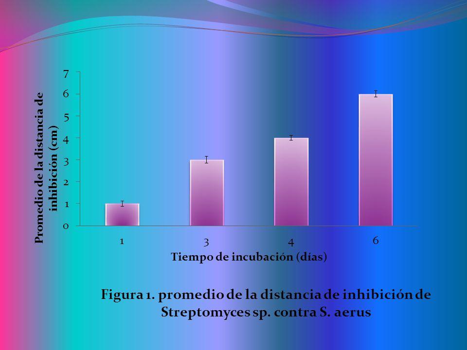 Inhibición de Streptomyces sp.en contra de E.