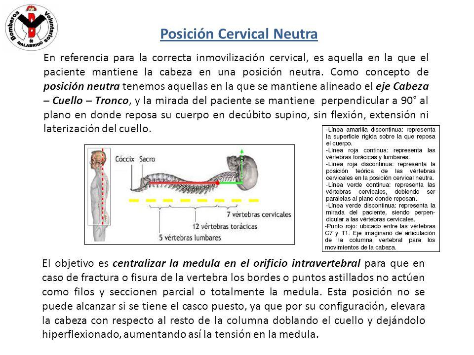 Posición Cervical Neutra En referencia para la correcta inmovilización cervical, es aquella en la que el paciente mantiene la cabeza en una posición n