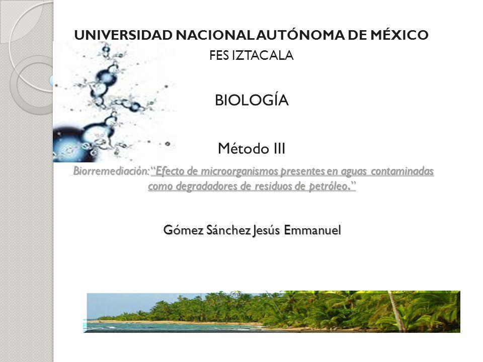 UNIVERSIDAD NACIONAL AUTÓNOMA DE MÉXICO FES IZTACALA BIOLOGÍA Método III Biorremediación: Efecto de microorganismos presentes en aguas contaminadas co