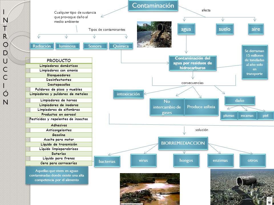 Contaminación agua suelo aire Radiación Aquellas que viven en aguas contaminadas donde existe una alta competencia por el alimento luminosa intoxicaci
