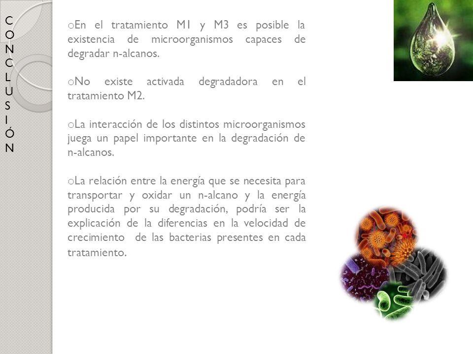 CONCLUSIÓNCONCLUSIÓN o En el tratamiento M1 y M3 es posible la existencia de microorganismos capaces de degradar n-alcanos. o No existe activada degra