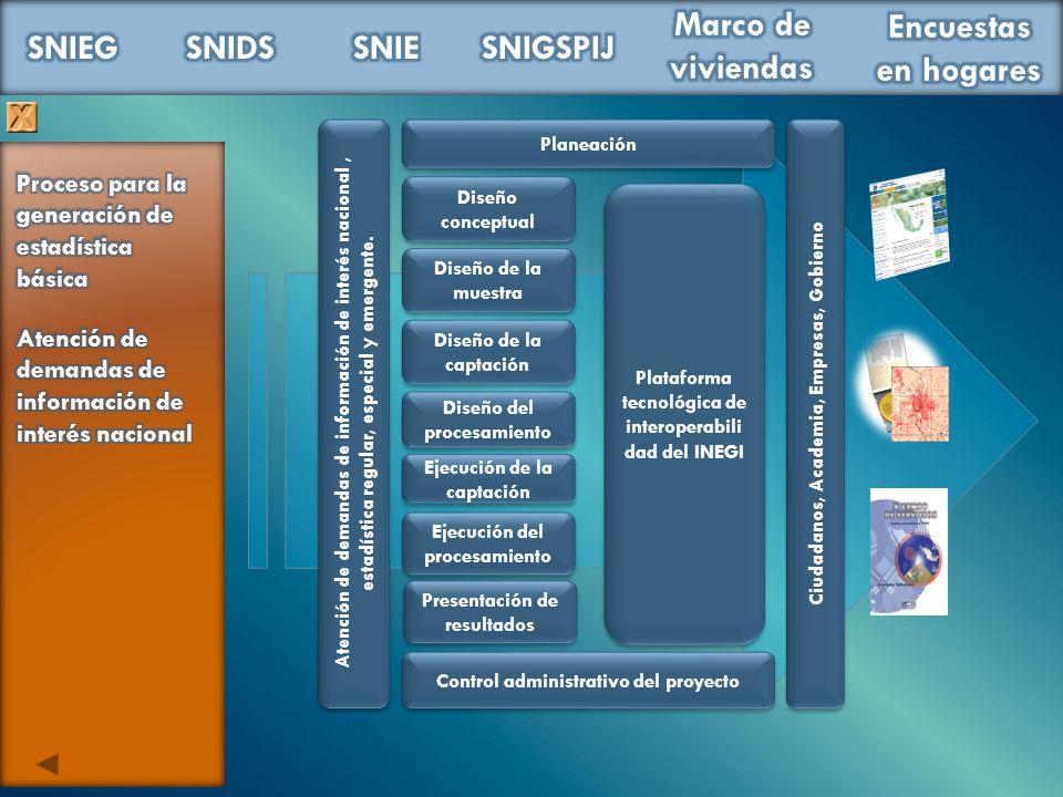Planeación Diseño conceptual Diseño de la muestra Diseño de la captación Diseño del procesamiento Control administrativo del proyecto Plataforma tecno
