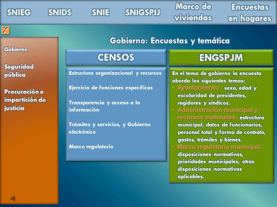 Estructura organizacional y recursos Ejercicio de funciones específicas Transparencia y acceso a la información Trámites y servicios, y Gobierno elect