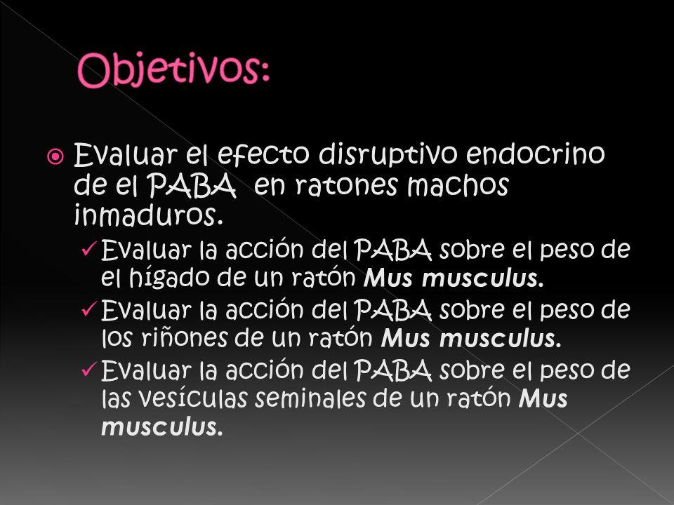 Evaluar el efecto disruptivo endocrino de el PABA en ratones machos inmaduros.