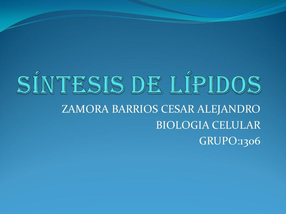 ZAMORA BARRIOS CESAR ALEJANDRO BIOLOGIA CELULAR GRUPO:1306