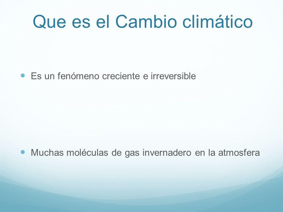 Que es el Cambio climático Es un fenómeno creciente e irreversible Muchas moléculas de gas invernadero en la atmosfera