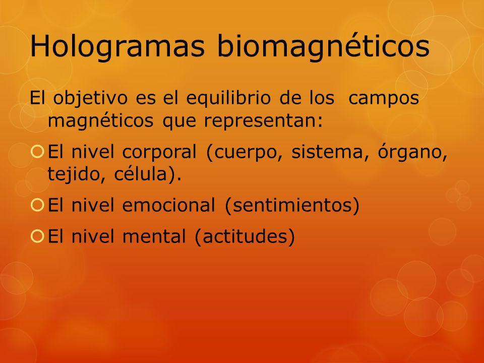 El objetivo es el equilibrio de los campos magnéticos que representan: El nivel corporal (cuerpo, sistema, órgano, tejido, célula). El nivel emocional