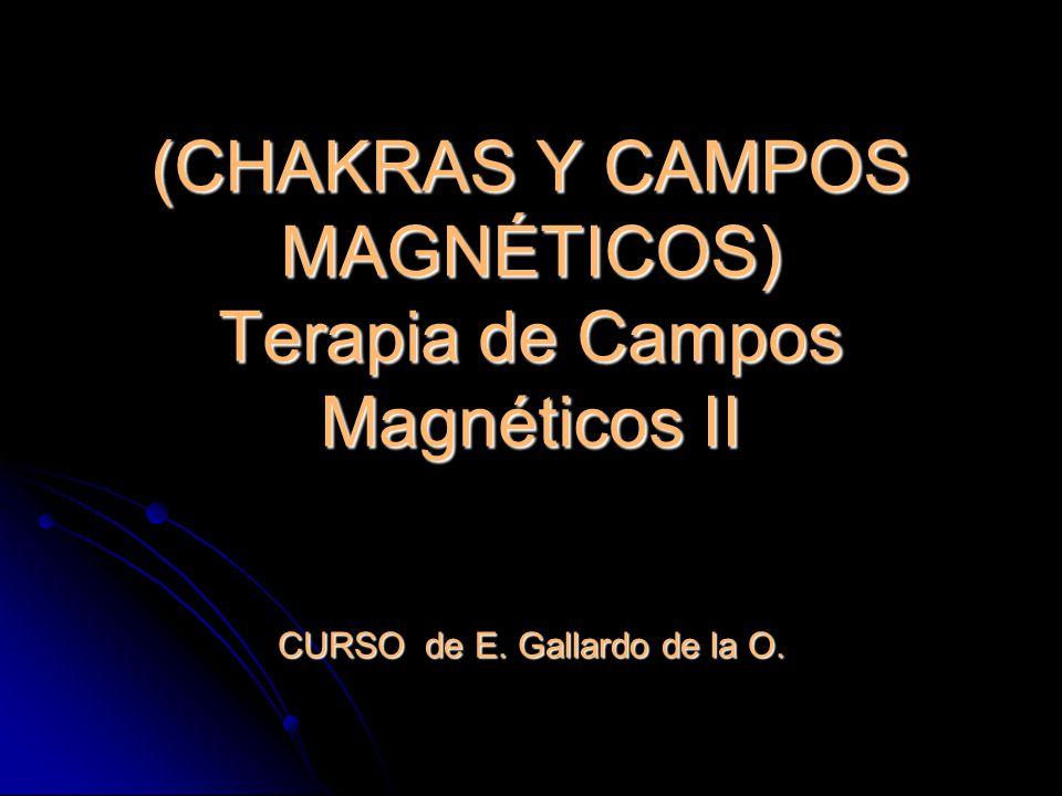 (CHAKRAS Y CAMPOS MAGNÉTICOS) Terapia de Campos Magnéticos II CURSO de E. Gallardo de la O.