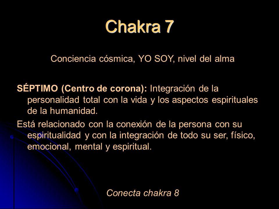 Chakra 7 Conciencia cósmica, YO SOY, nivel del alma SÉPTIMO (Centro de corona): Integración de la personalidad total con la vida y los aspectos espirituales de la humanidad.