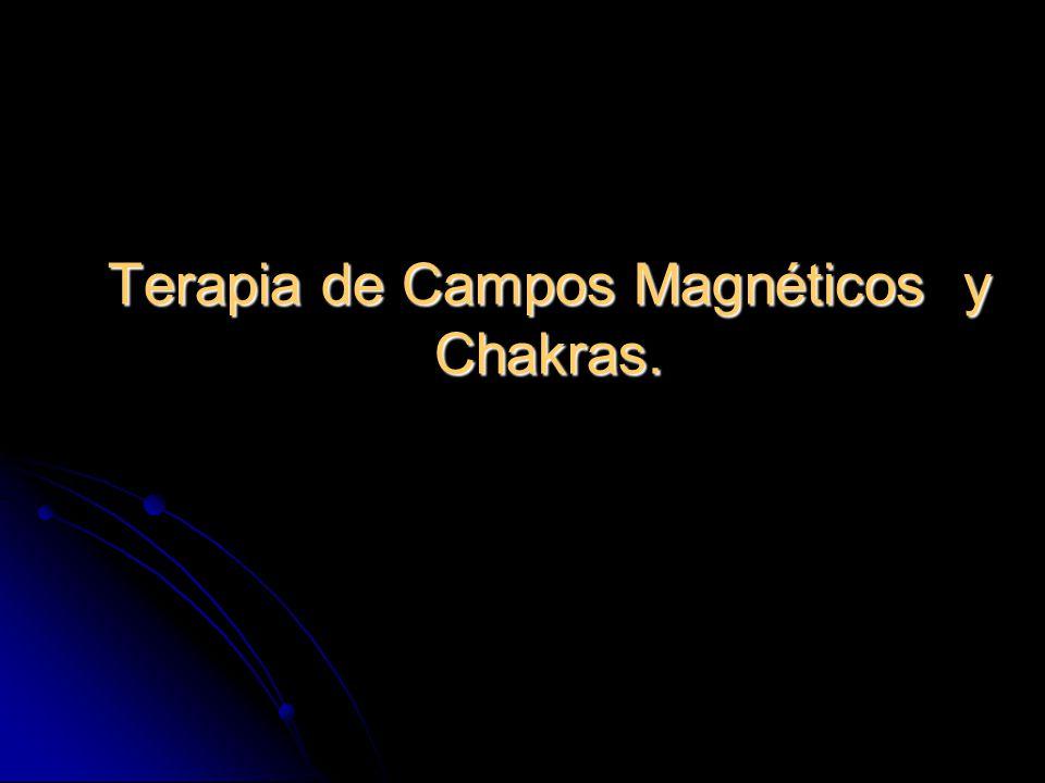 Terapia de Campos Magnéticos y Chakras.