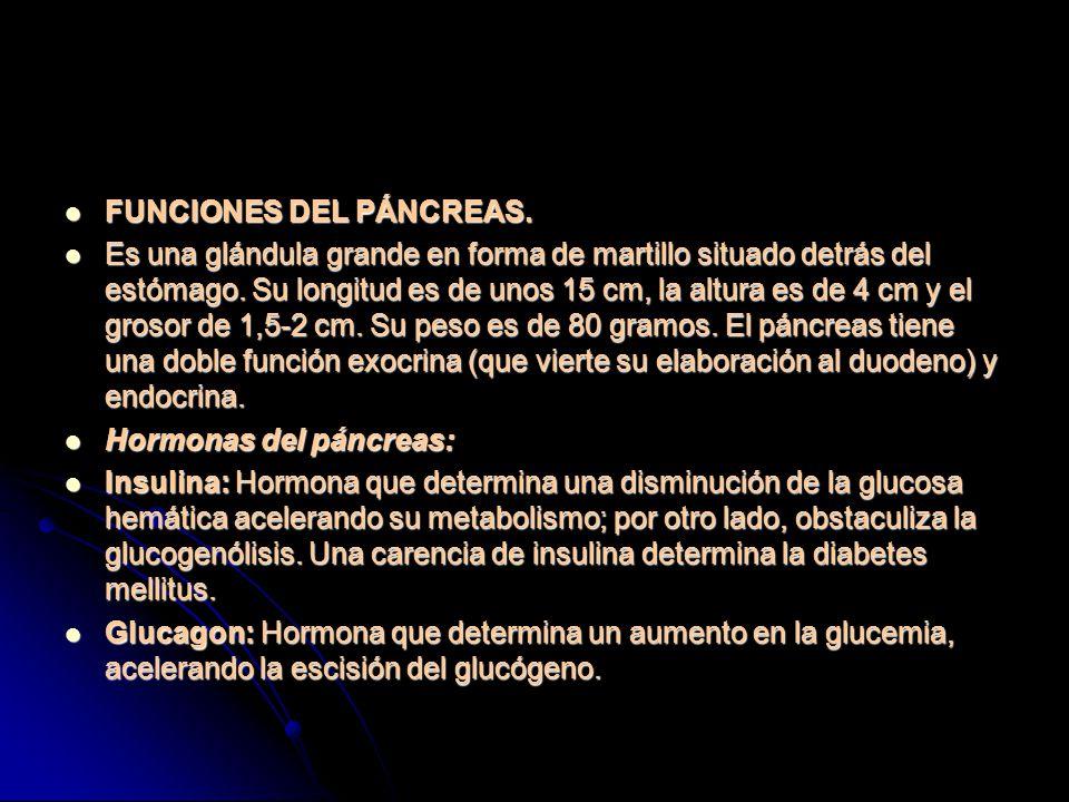 FUNCIONES DEL PÁNCREAS.FUNCIONES DEL PÁNCREAS.