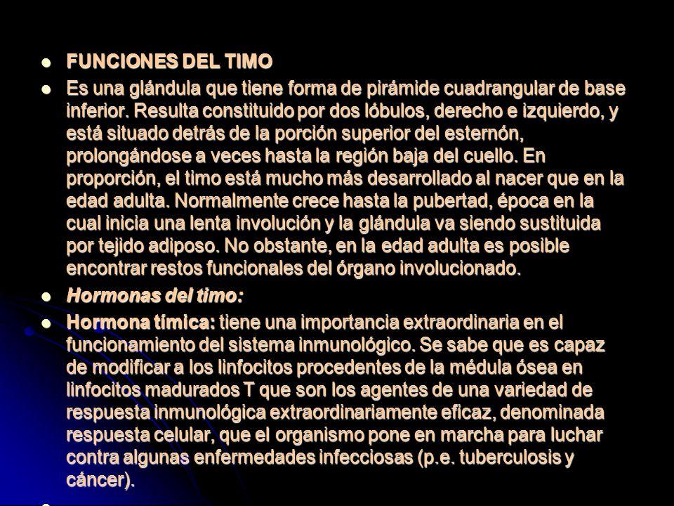 FUNCIONES DEL TIMO FUNCIONES DEL TIMO Es una glándula que tiene forma de pirámide cuadrangular de base inferior.
