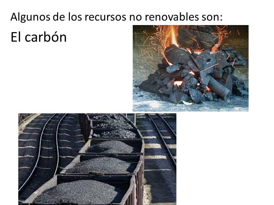 Algunos de los recursos no renovables son: El carbón