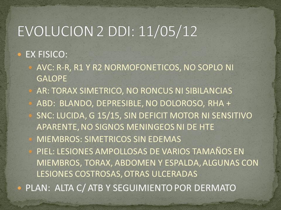 EX FISICO: AVC: R-R, R1 Y R2 NORMOFONETICOS, NO SOPLO NI GALOPE AR: TORAX SIMETRICO, NO RONCUS NI SIBILANCIAS ABD: BLANDO, DEPRESIBLE, NO DOLOROSO, RH