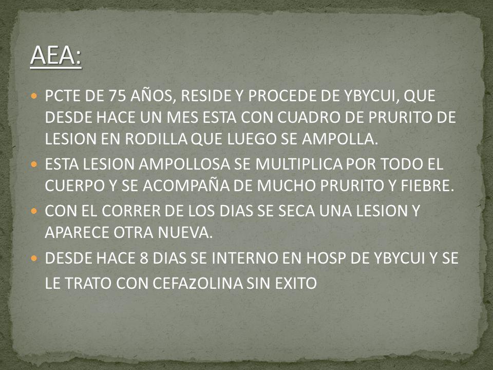 PCTE DE 75 AÑOS, RESIDE Y PROCEDE DE YBYCUI, QUE DESDE HACE UN MES ESTA CON CUADRO DE PRURITO DE LESION EN RODILLA QUE LUEGO SE AMPOLLA. ESTA LESION A