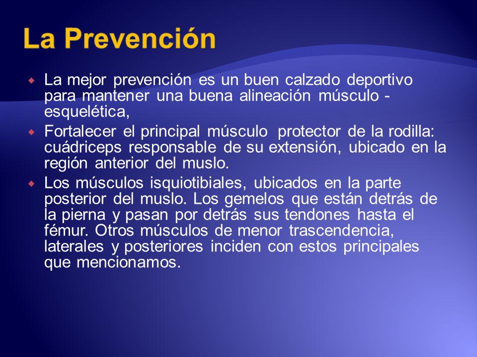 La mejor prevención es un buen calzado deportivo para mantener una buena alineación músculo - esquelética, Fortalecer el principal músculo protector d