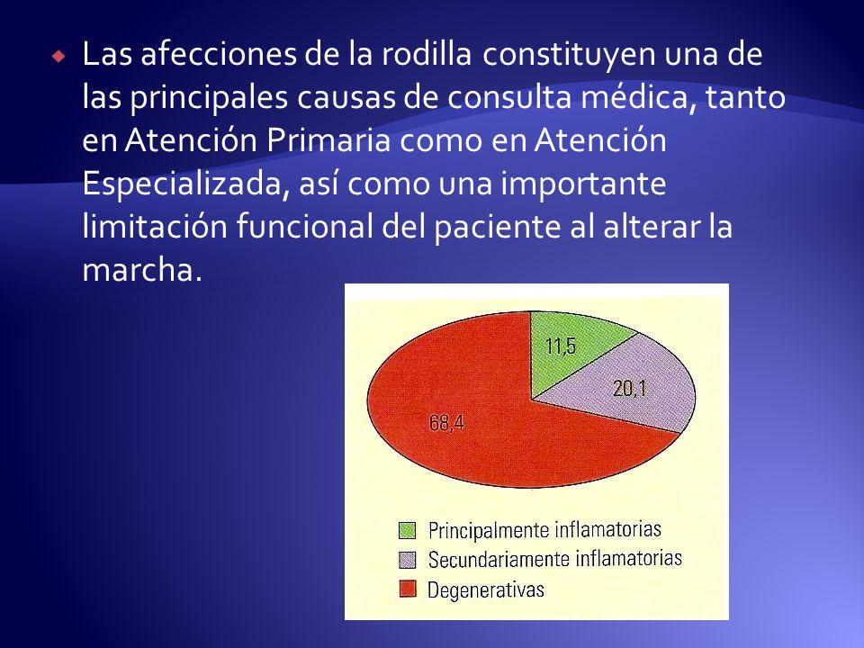 Caso 1Caso 2 Respuesta terapéutica 4 MesesRespuesta terapéutica 2 Meses Observaciones: Traumeel + Zeel sin apoyo de Glucosamina Condroitín + MSM demostró mayor eficacia y menor tiempo de respuesta en Condromalacia Patelar