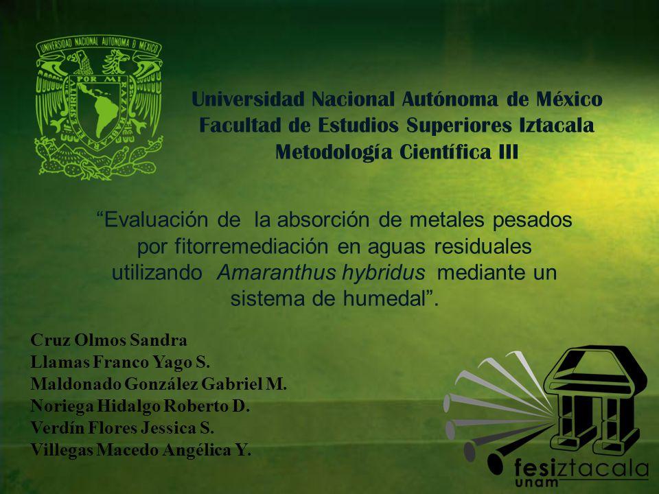 Universidad Nacional Autónoma de México Facultad de Estudios Superiores Iztacala Metodología Científica III Cruz Olmos Sandra Llamas Franco Yago S.