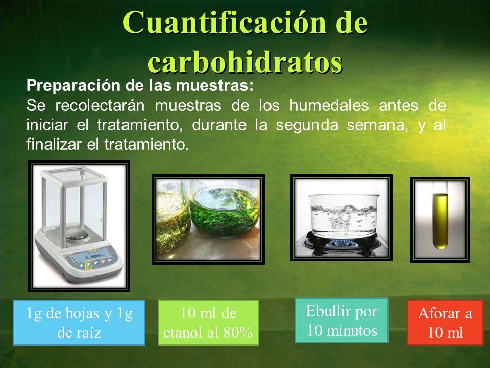 Cuantificación de carbohidratos Preparación de las muestras: Se recolectarán muestras de los humedales antes de iniciar el tratamiento, durante la segunda semana, y al finalizar el tratamiento.
