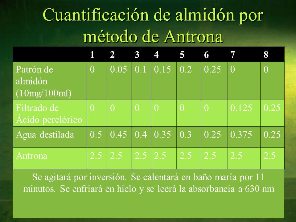 Cuantificación de almidón por método de Antrona 12345678 Patrón de almidón (10mg/100ml) 00.050.10.150.20.2500 Filtrado de Ácido perclórico 0000000.1250.25 Agua destilada0.50.450.40.350.30.250.3750.25 Antrona2.5 Se agitará por inversión.