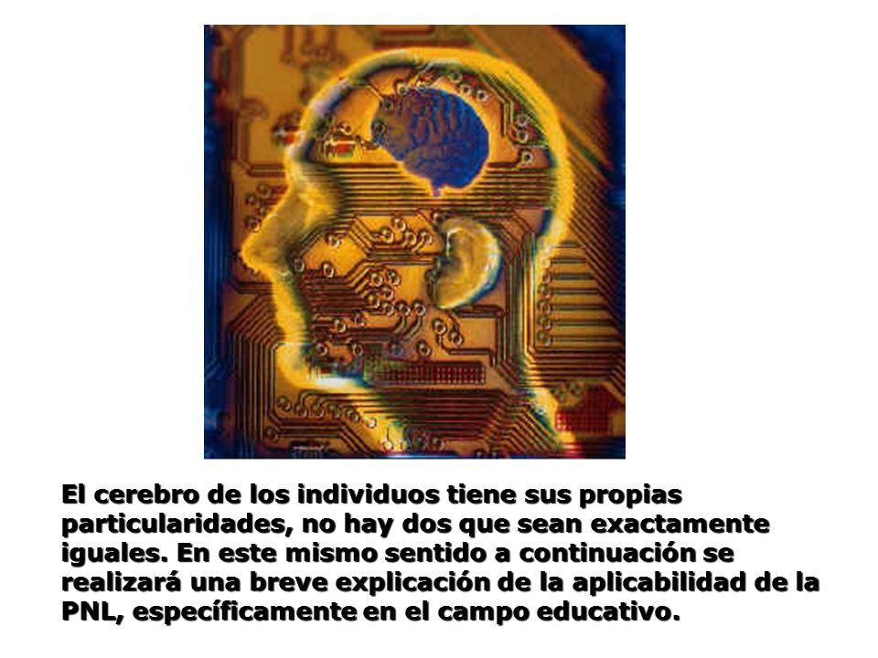 El cerebro de los individuos tiene sus propias particularidades, no hay dos que sean exactamente iguales. En este mismo sentido a continuación se real