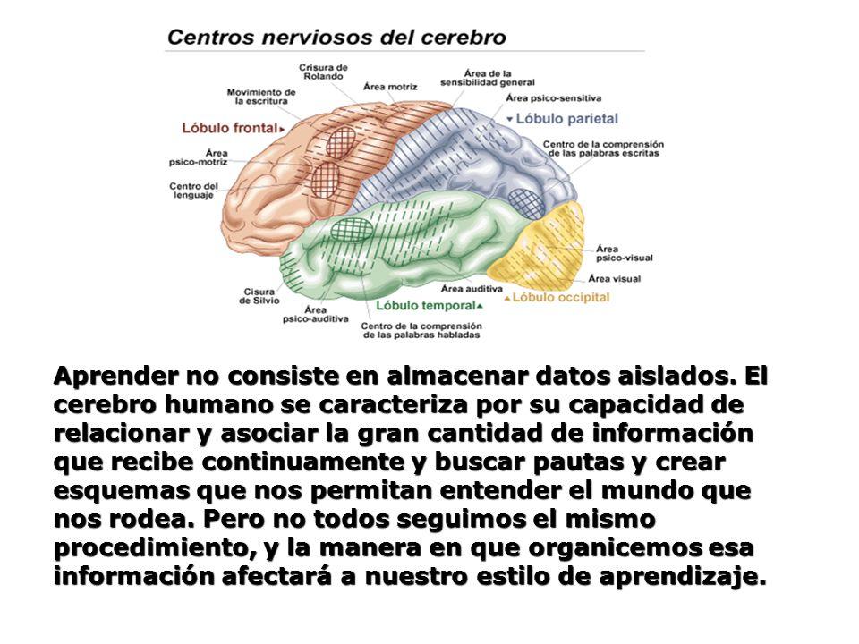 Aprender no consiste en almacenar datos aislados. El cerebro humano se caracteriza por su capacidad de relacionar y asociar la gran cantidad de inform
