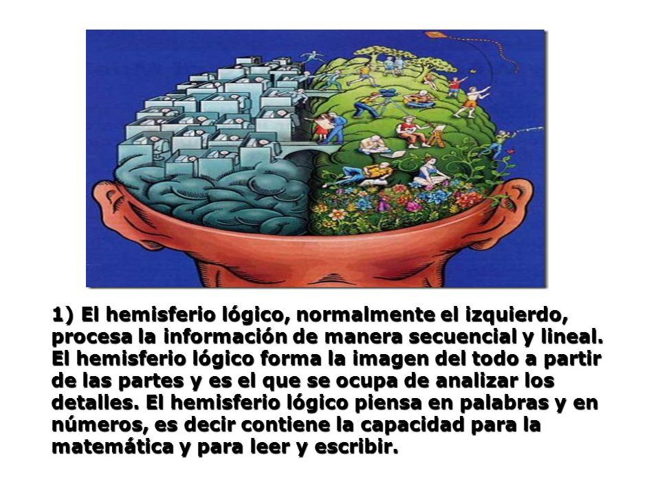 1) El hemisferio lógico, normalmente el izquierdo, procesa la información de manera secuencial y lineal. El hemisferio lógico forma la imagen del todo