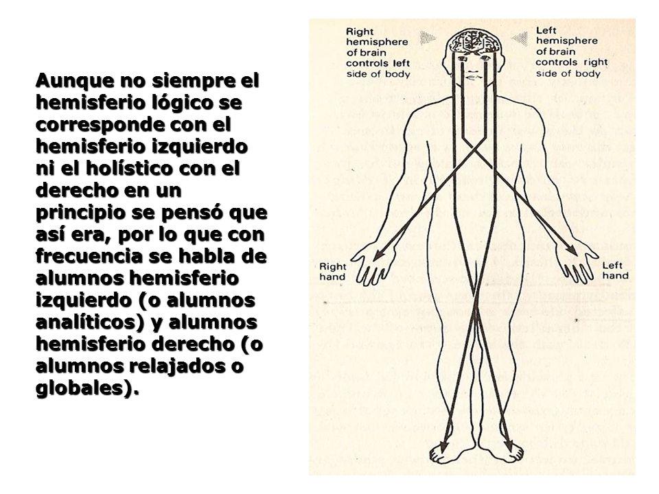 Aunque no siempre el hemisferio lógico se corresponde con el hemisferio izquierdo ni el holístico con el derecho en un principio se pensó que así era,