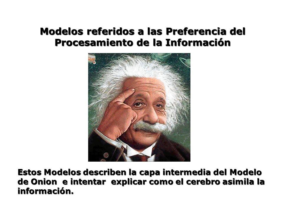 Modelos referidos a las Preferencia del Procesamiento de la Información Estos Modelos describen la capa intermedia del Modelo de Onion e intentar expl