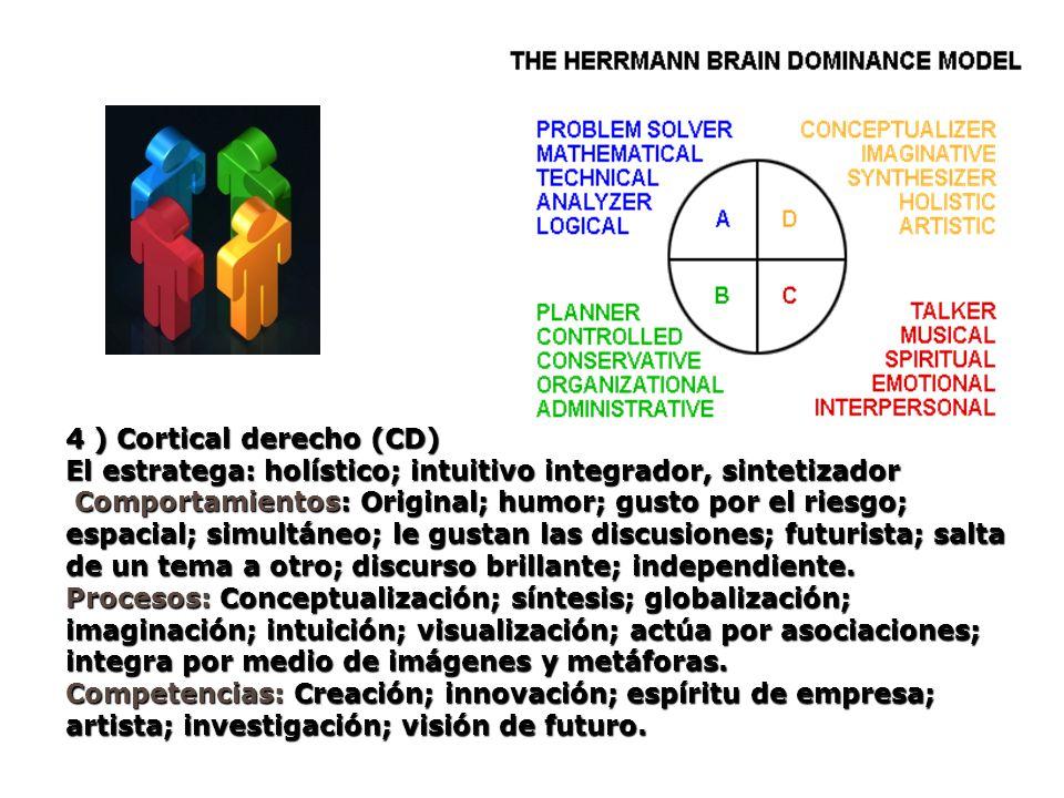 4 ) Cortical derecho (CD) El estratega: holístico; intuitivo integrador, sintetizador Comportamientos: Original; humor; gusto por el riesgo; espacial;