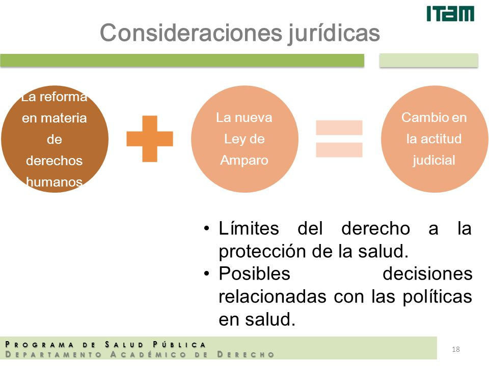 La reforma en materia de derechos humanos La nueva Ley de Amparo Cambio en la actitud judicial P ROGRAMA DE S ALUD P ÚBLICA D EPARTAMENTO A CADÉMICO D