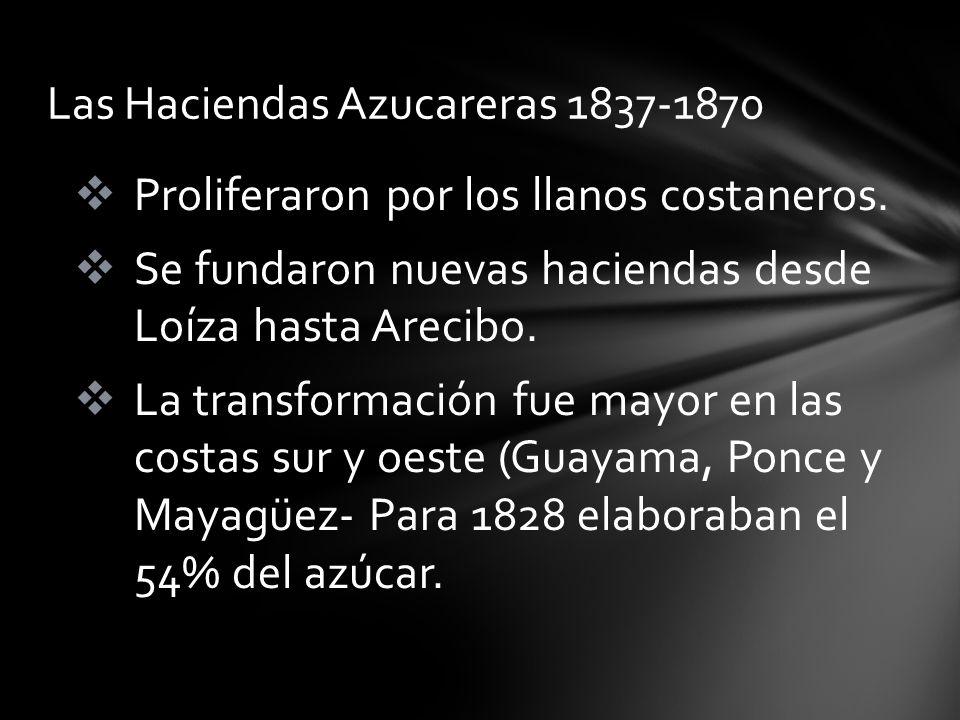 Proliferaron por los llanos costaneros. Se fundaron nuevas haciendas desde Loíza hasta Arecibo. La transformación fue mayor en las costas sur y oeste