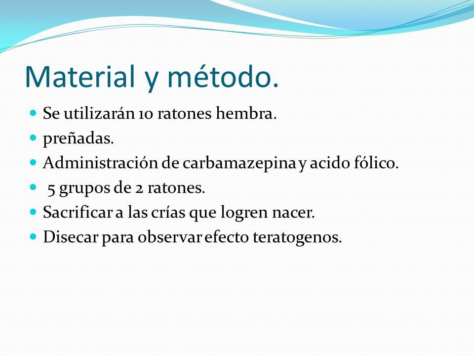 Material y método. Se utilizarán 10 ratones hembra. preñadas. Administración de carbamazepina y acido fólico. 5 grupos de 2 ratones. Sacrificar a las