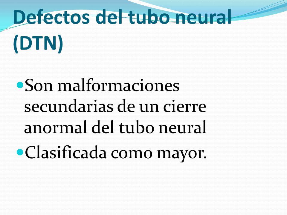 Defectos del tubo neural (DTN) Son malformaciones secundarias de un cierre anormal del tubo neural Clasificada como mayor.