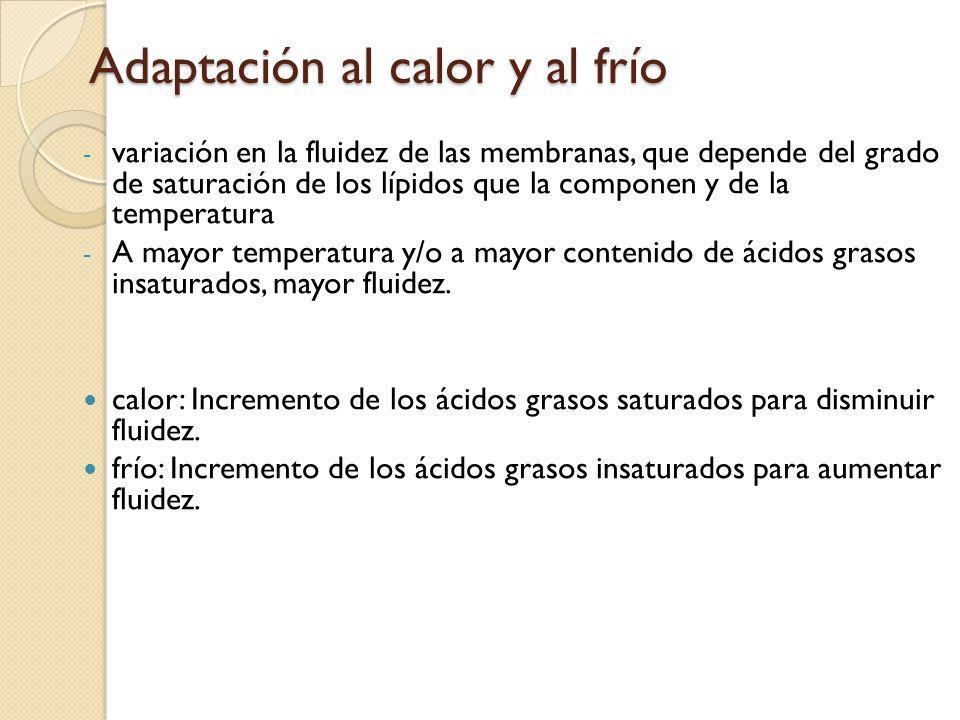 Adaptación al calor o al frío La capacidad de super enfriamento permite a las plantas tolerar la congelación.