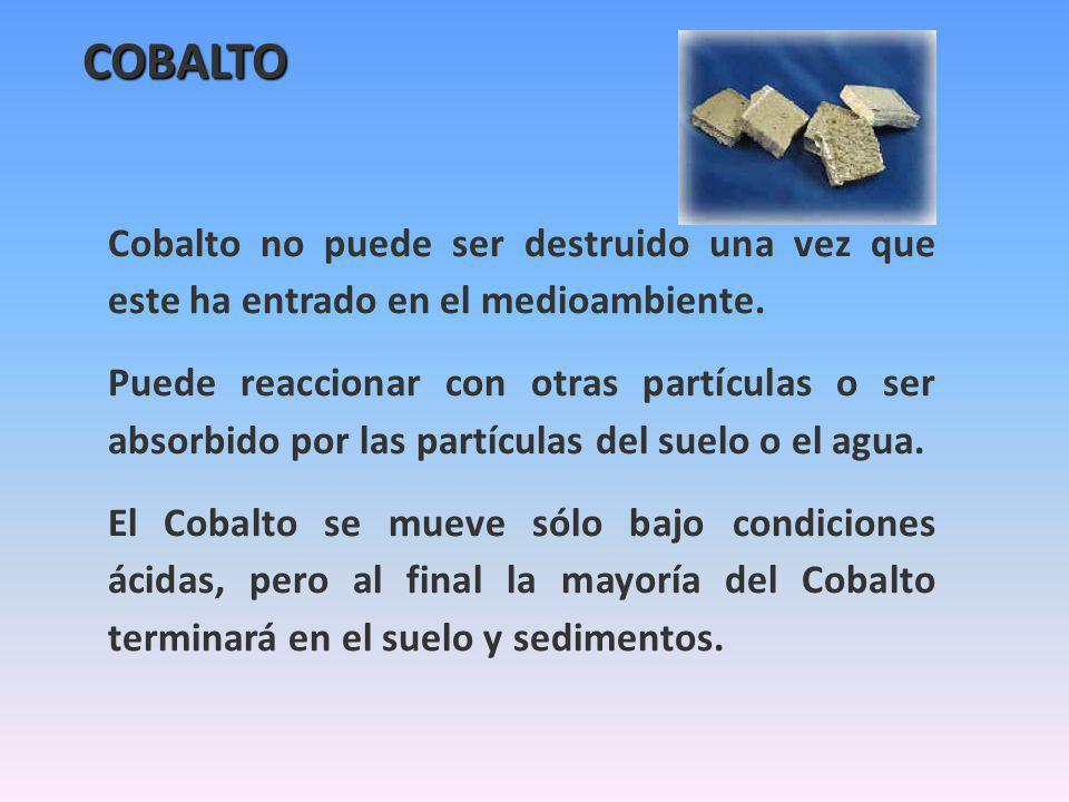COBALTO Cobalto no puede ser destruido una vez que este ha entrado en el medioambiente. Puede reaccionar con otras partículas o ser absorbido por las