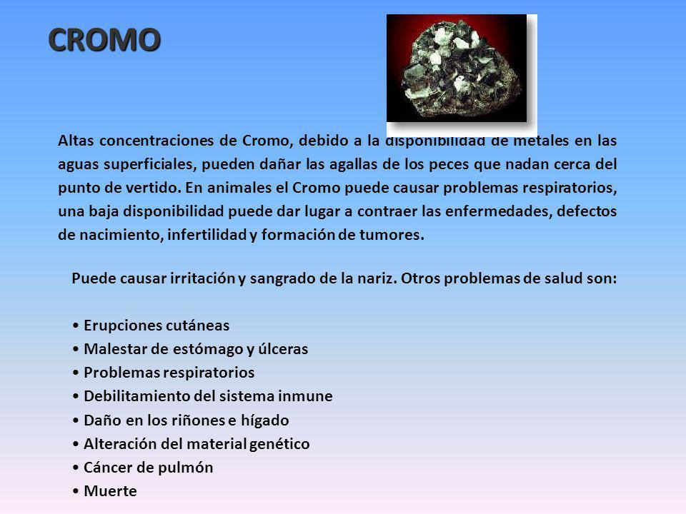 CROMO Altas concentraciones de Cromo, debido a la disponibilidad de metales en las aguas superficiales, pueden dañar las agallas de los peces que nadan cerca del punto de vertido.
