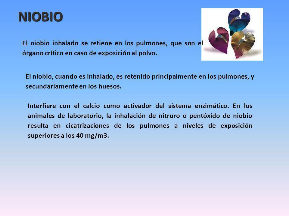 NIOBIO El niobio inhalado se retiene en los pulmones, que son el órgano crítico en caso de exposición al polvo. El niobio, cuando es inhalado, es rete