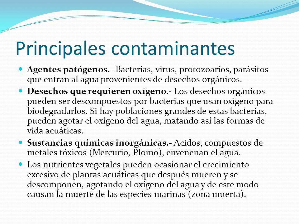Principales contaminantes Agentes patógenos.- Bacterias, virus, protozoarios, parásitos que entran al agua provenientes de desechos orgánicos. Desecho