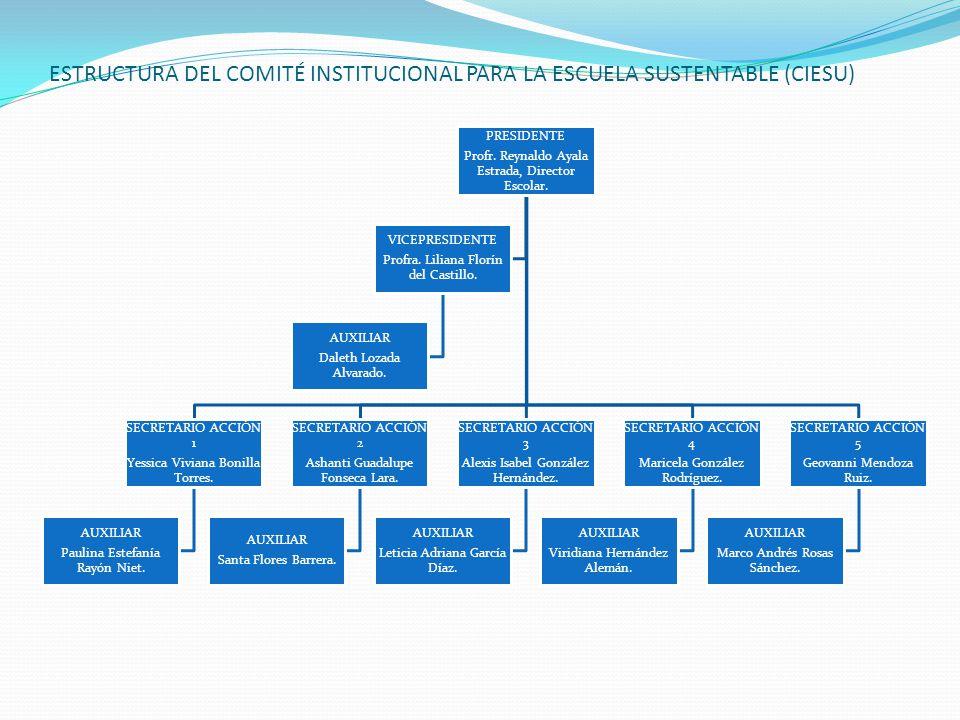 ESTRUCTURA DEL COMITÉ INSTITUCIONAL PARA LA ESCUELA SUSTENTABLE (CIESU) PRESIDENTE Profr. Reynaldo Ayala Estrada, Director Escolar. SECRETARIO ACCIÓN