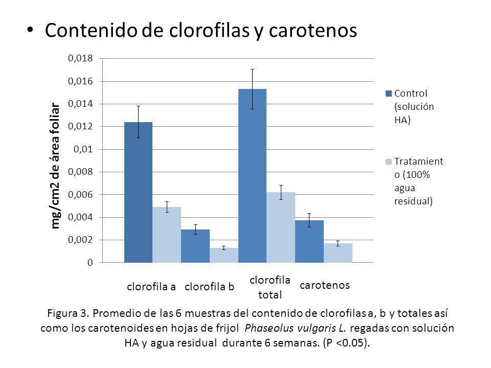 Contenido de clorofilas y carotenos Figura 3. Promedio de las 6 muestras del contenido de clorofilas a, b y totales así como los carotenoides en hojas