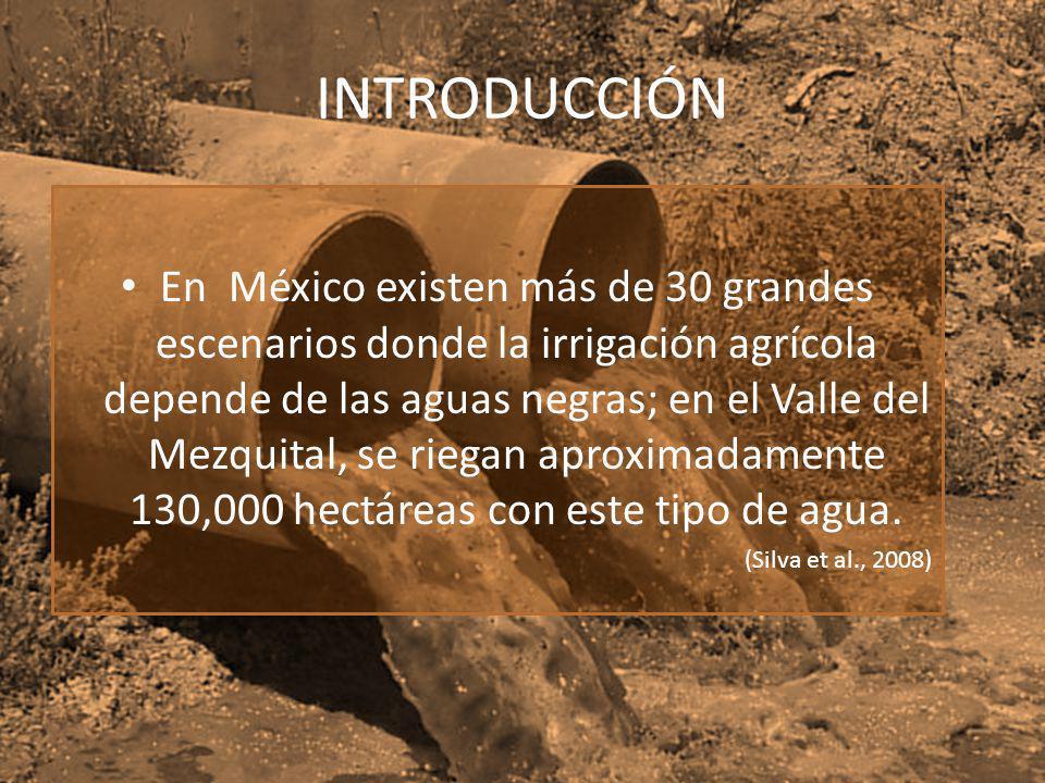 INTRODUCCIÓN En México existen más de 30 grandes escenarios donde la irrigación agrícola depende de las aguas negras; en el Valle del Mezquital, se ri