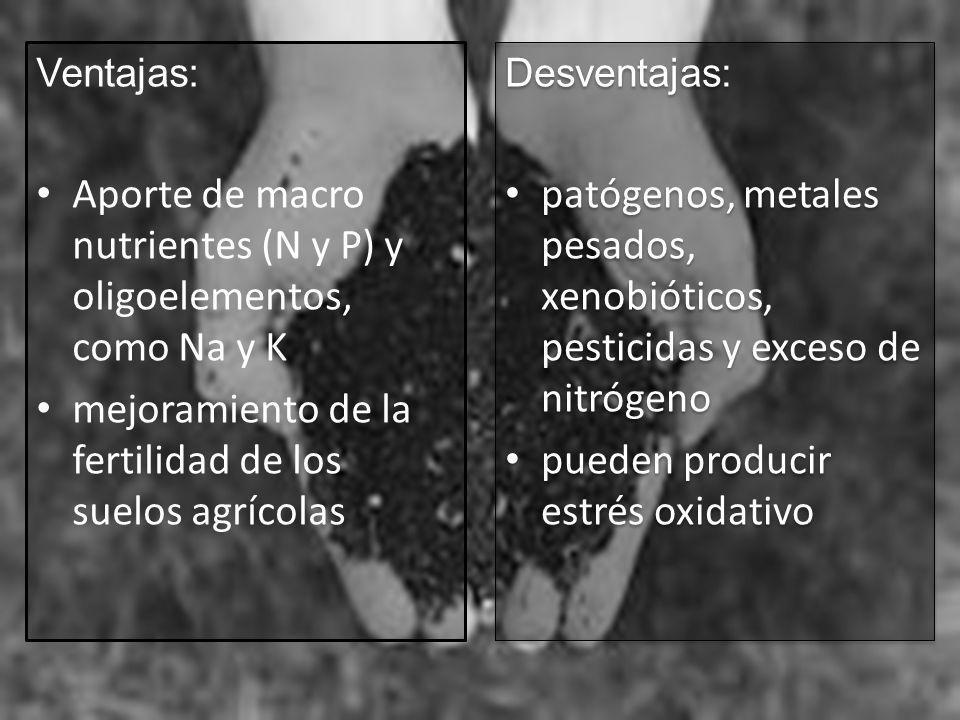 Ventajas: Aporte de macro nutrientes (N y P) y oligoelementos, como Na y K mejoramiento de la fertilidad de los suelos agrícolas Desventajas: patógeno