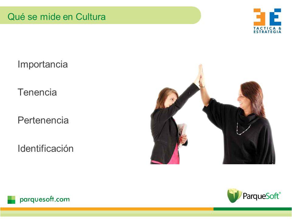Qué se mide en Cultura Importancia Tenencia Pertenencia Identificación